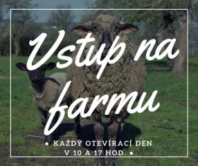 Vstup na farmu
